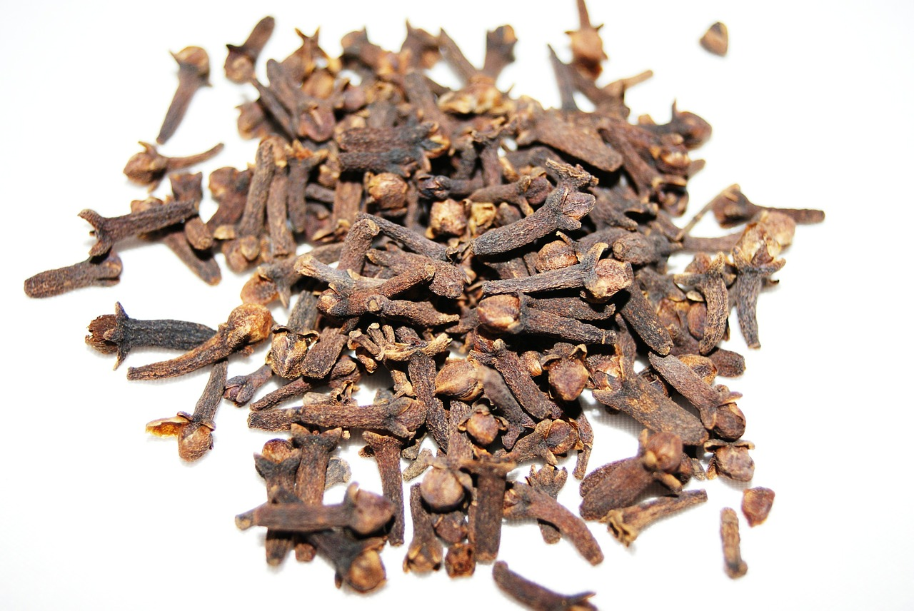 cloves spice brown free photo