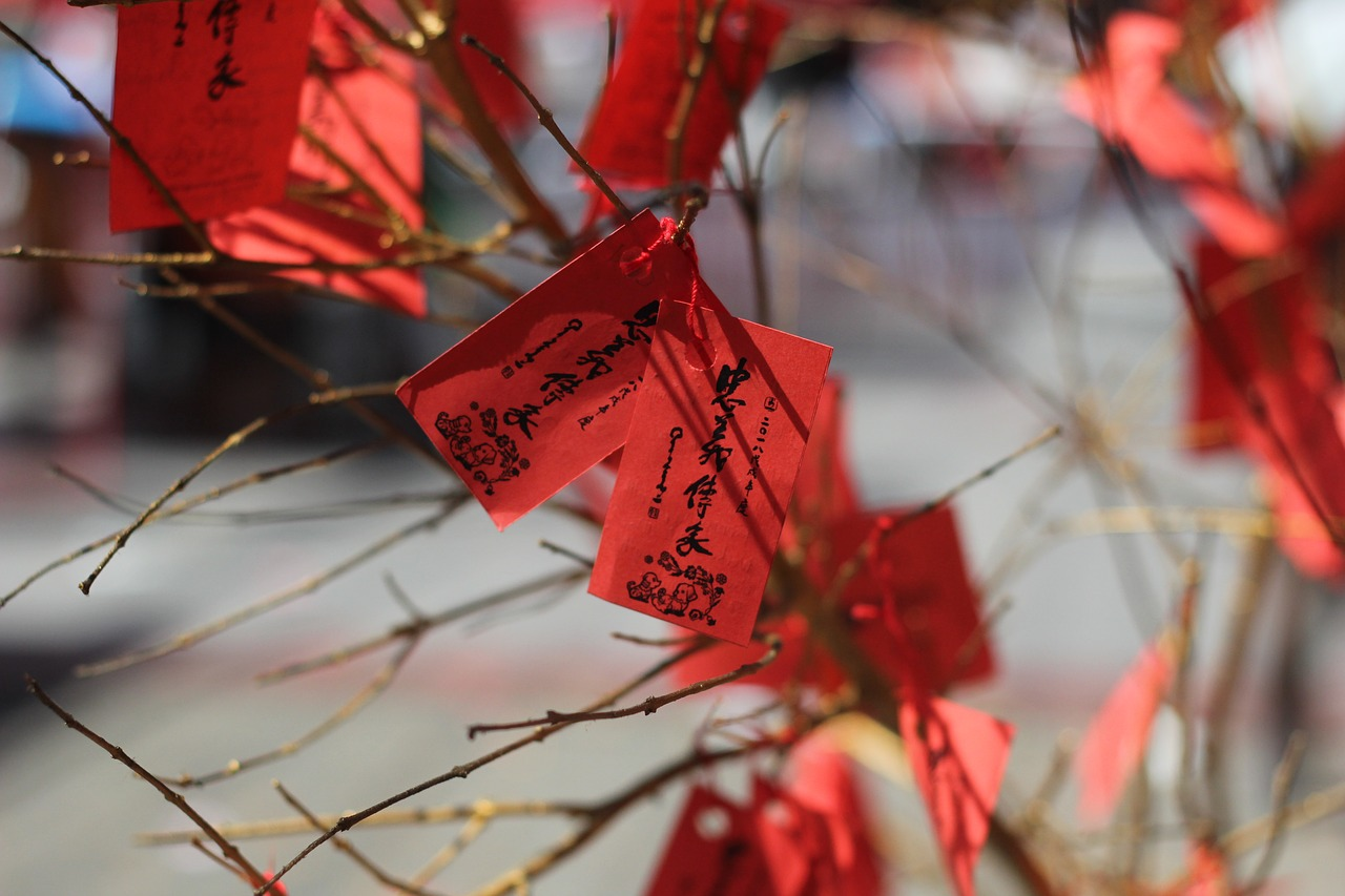 cny  chinese new year  red free photo