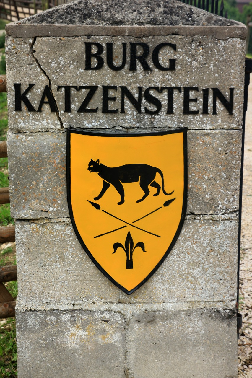 coat of arms shield castle middle ages katzenstein free photo from