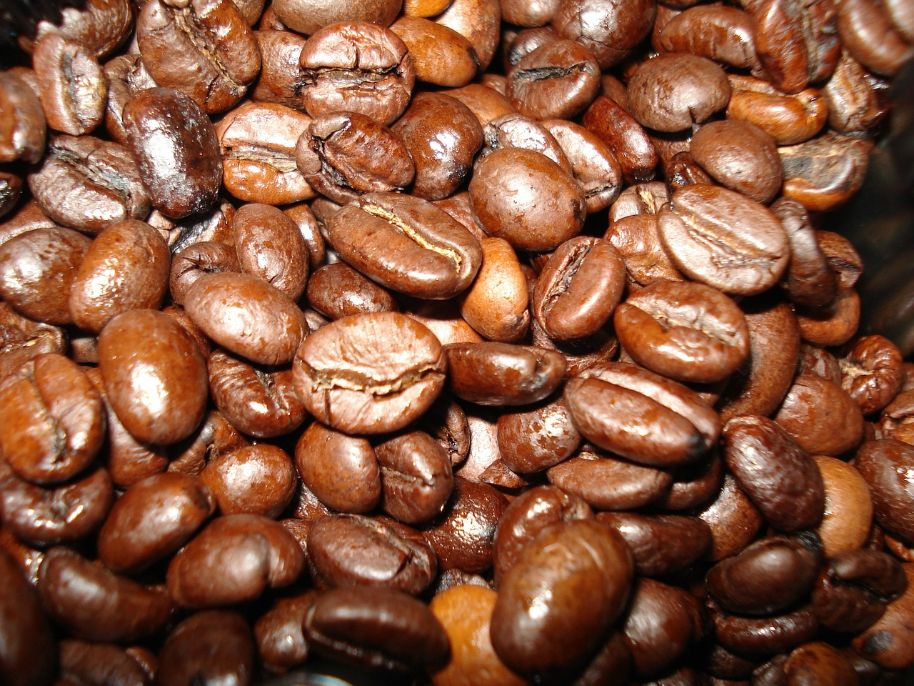 coffee beverages coffee beans free photo