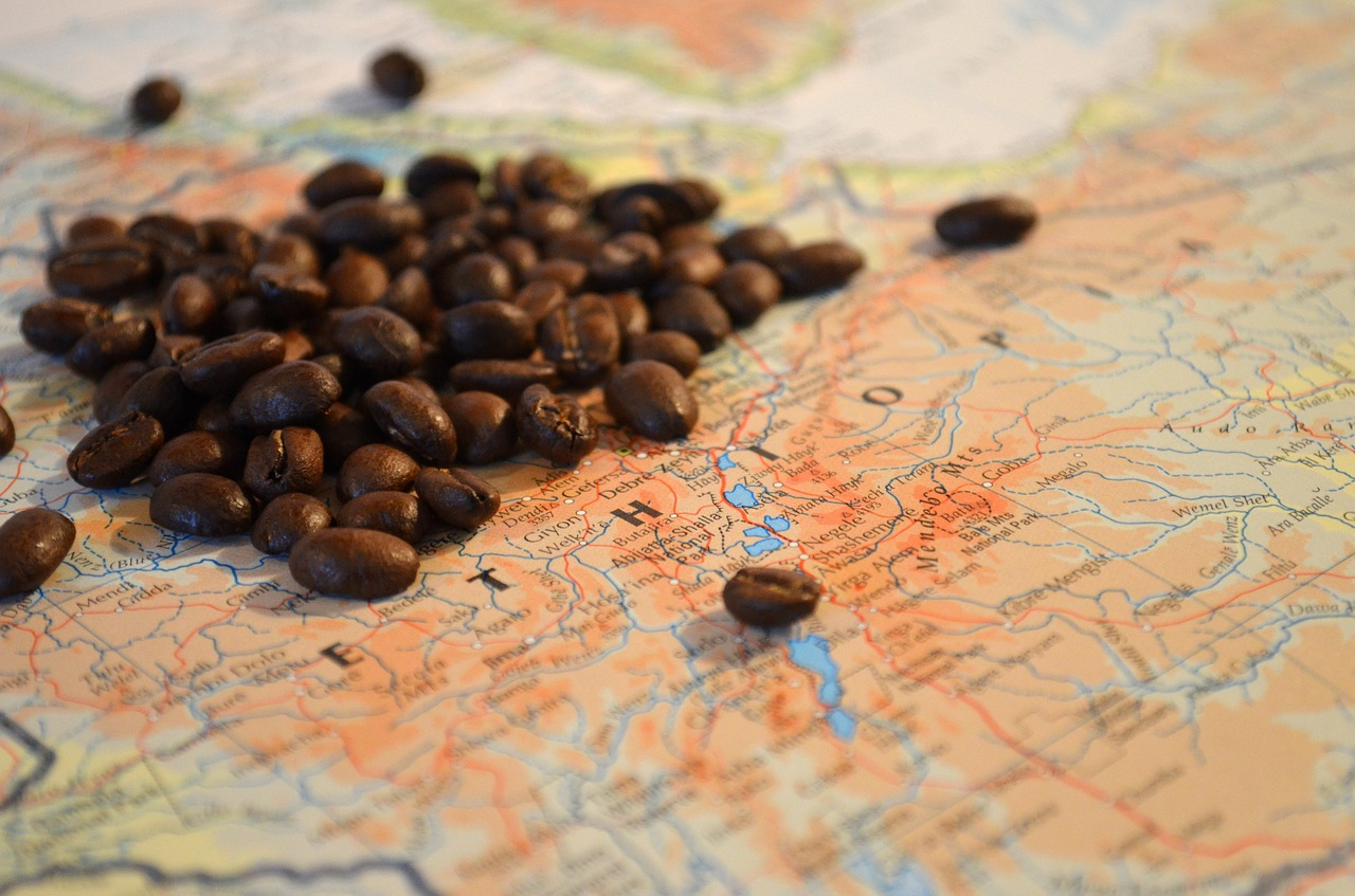 coffee beans ethiopia free photo