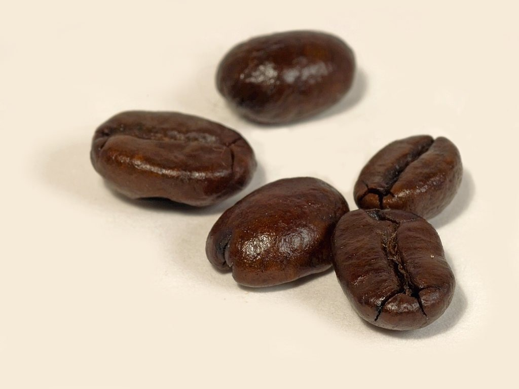 coffee beans coffee aroma free picture