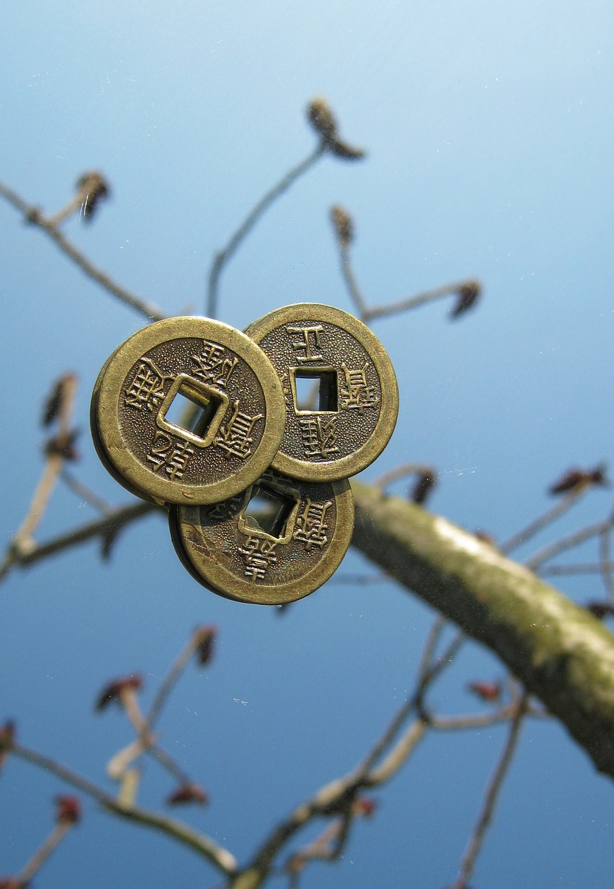 coins chinese tree free photo
