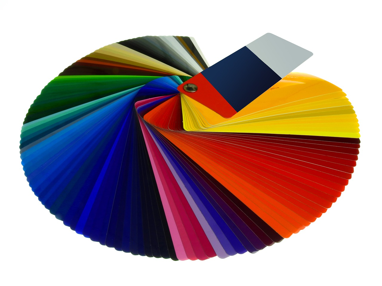 color fan color card color free photo