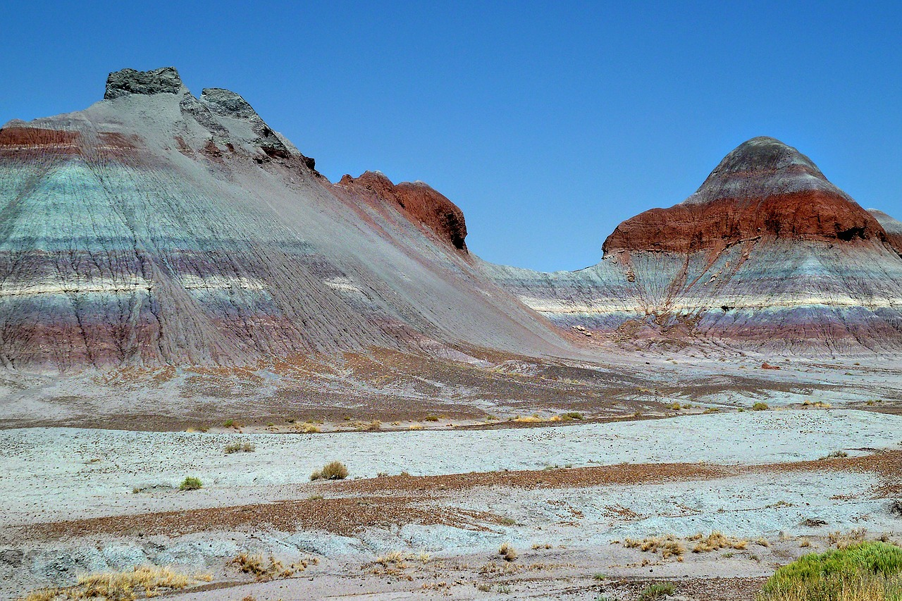 colorful petrified forest national park arizona free photo