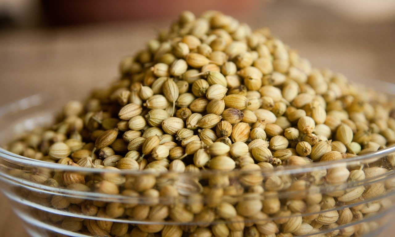 coriander seeds bowl free photo