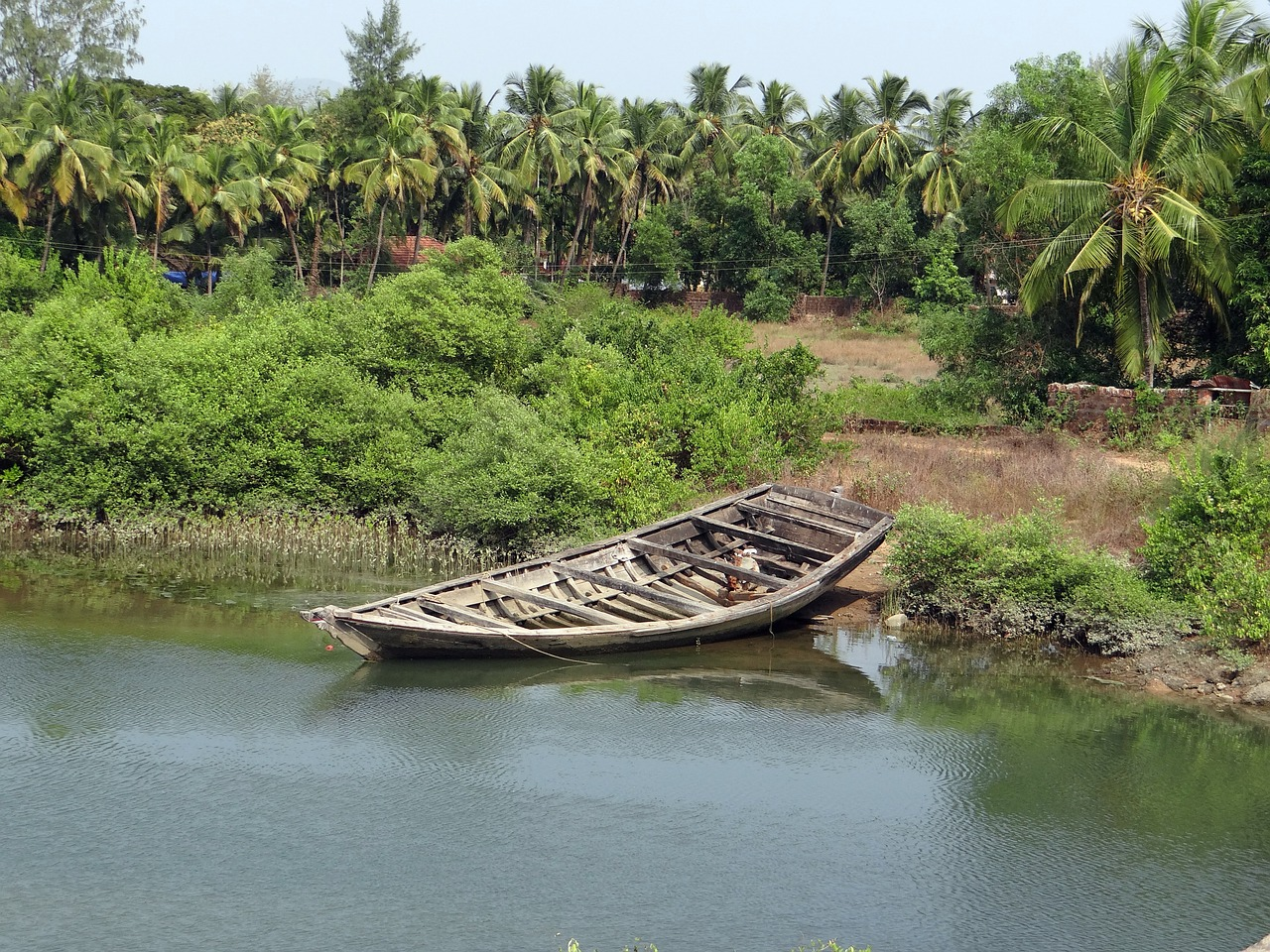 country boat tidal creek coconut groves free photo