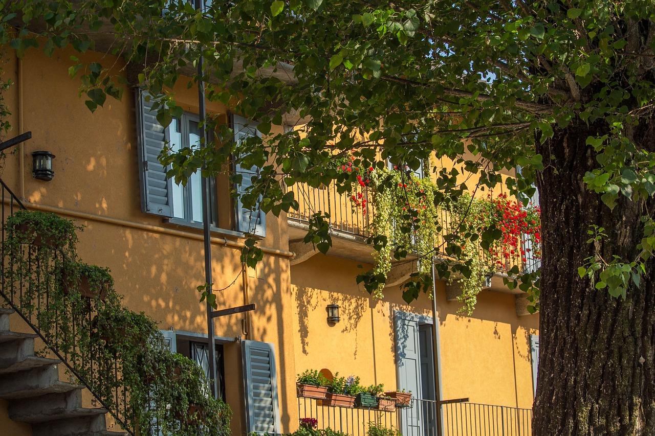 Court,habitation,spring,house,plants - free photo from needpix.com