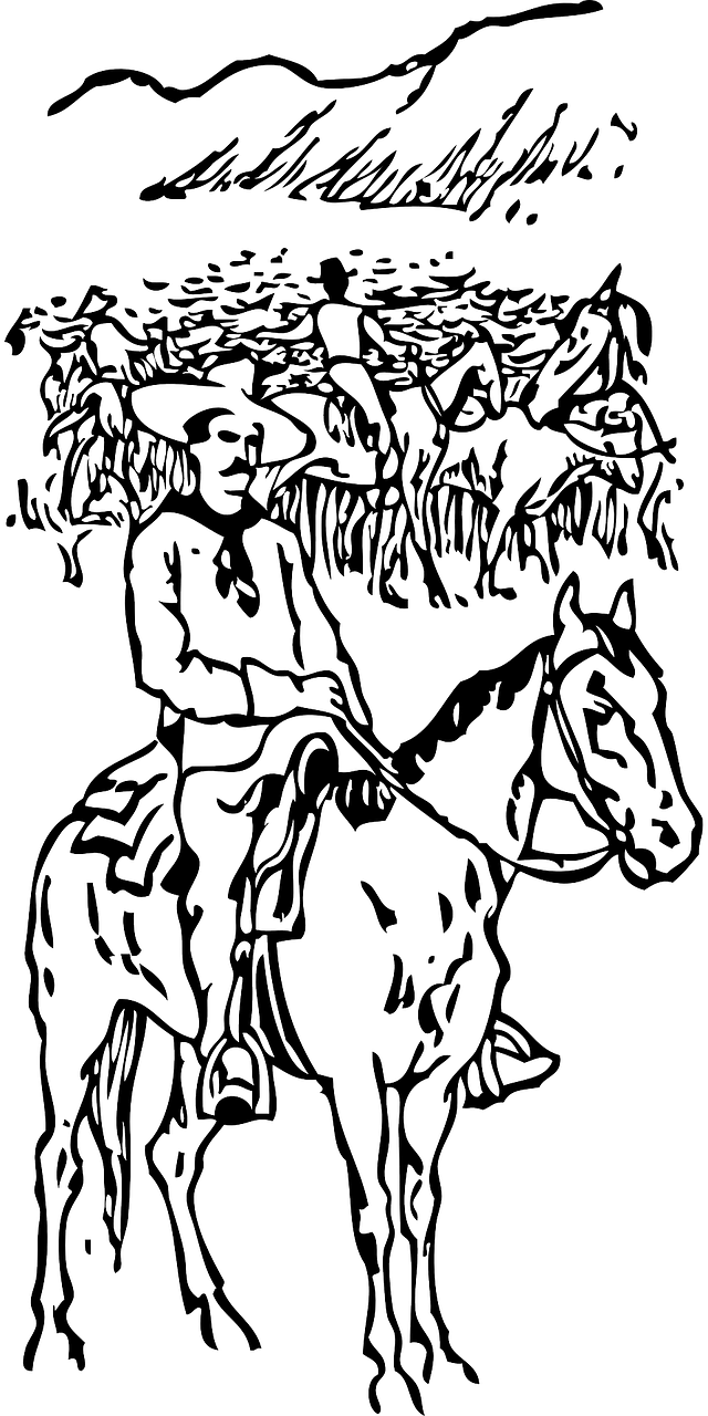 cowboy,horse,riding,rider,cattle,ranch,grazing,horseback,herding,free vector graphics,free pictures, free photos, free images, royalty free, free illustrations, public domain