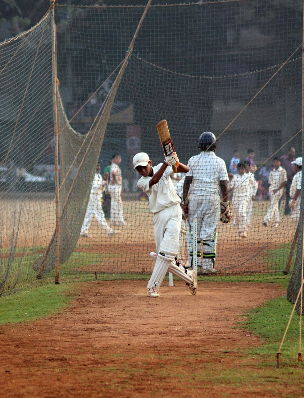 cricket batsman ball game free picture