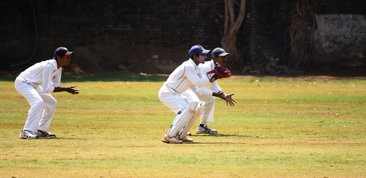 cricket wicket keeping free picture