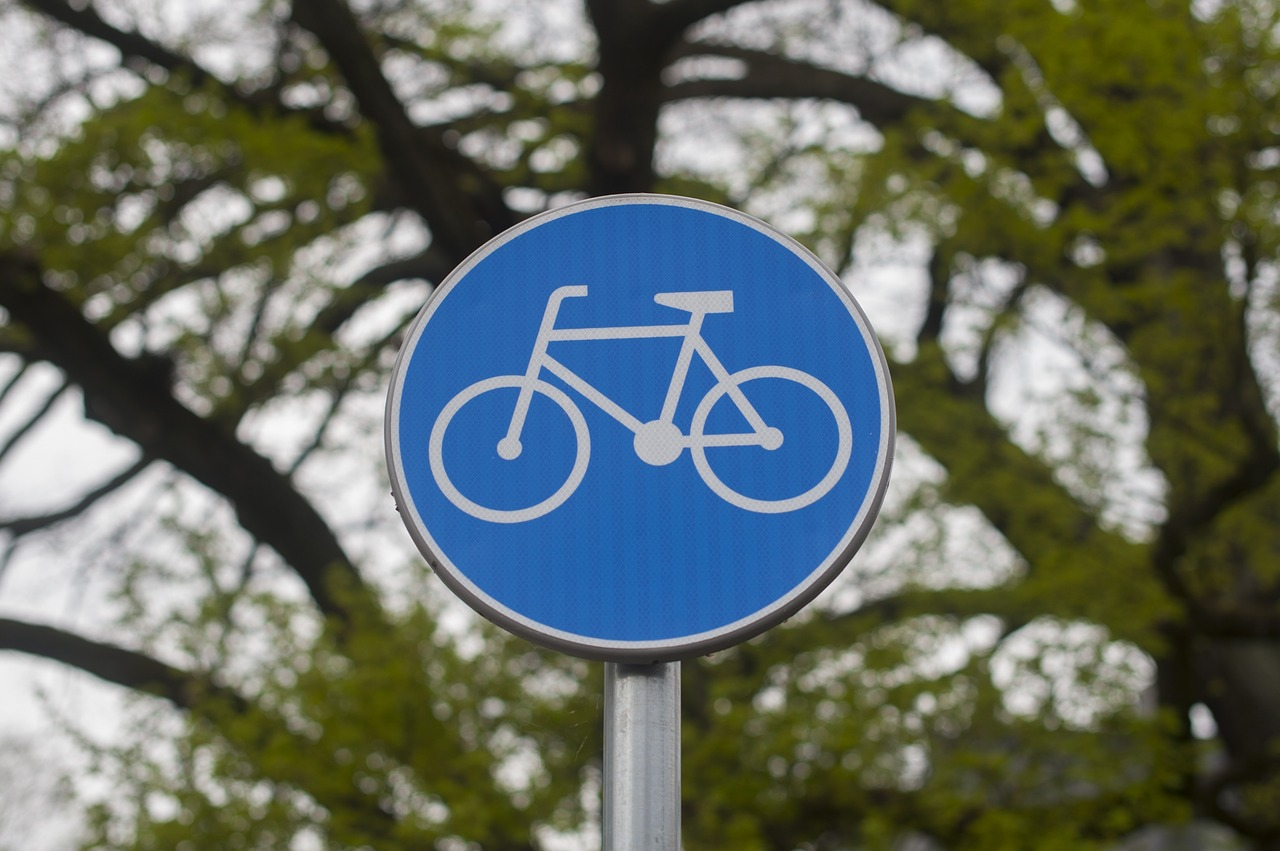 cycle path  cycling  bicycle path free photo