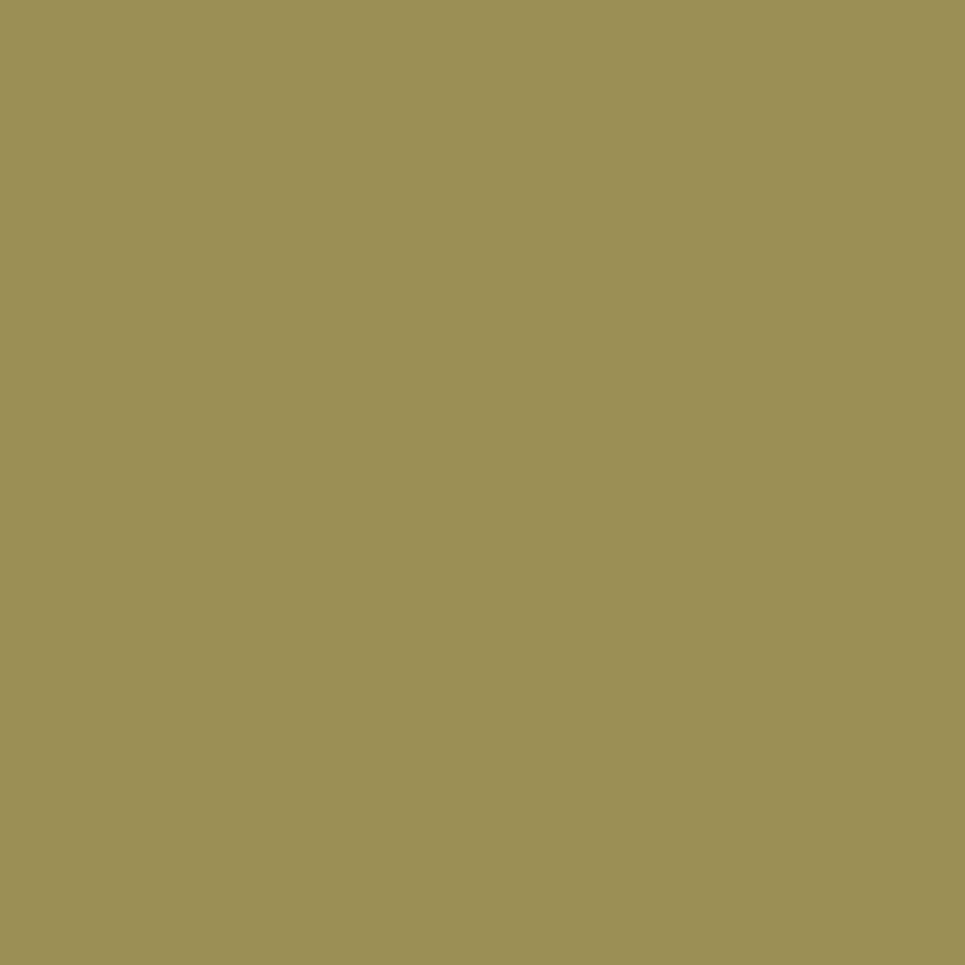 wallpaper,dark,khaki,color,background,plain,simple,dark khaki