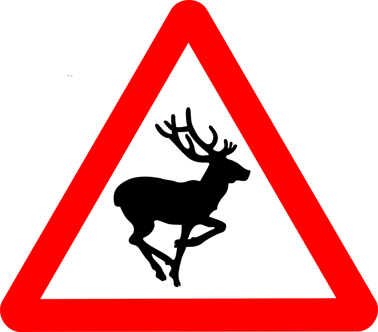 deer warning signs free photo