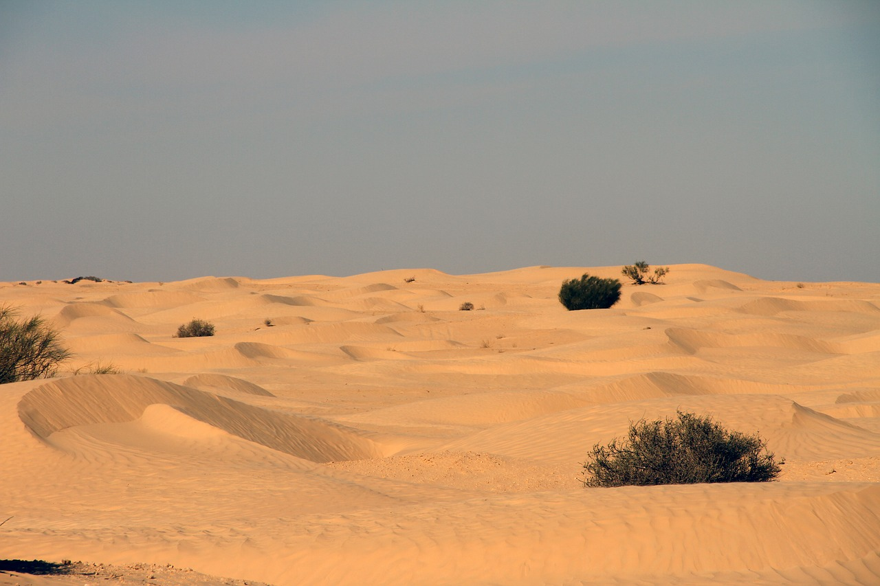 desert tunisia nature free photo