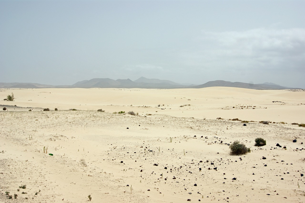 desert loneliness arid free photo