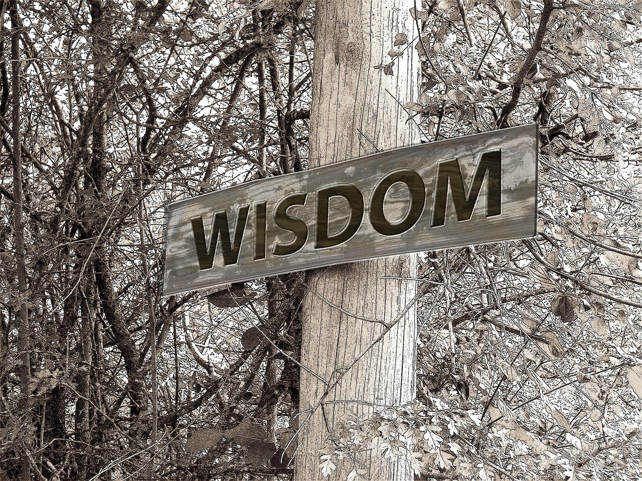 directory away wisdom free photo