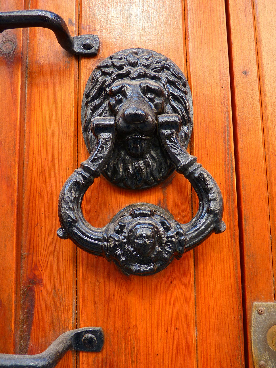 door thumper lion head free photo