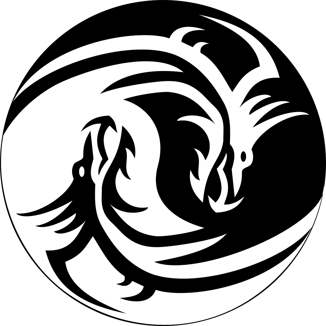 dragon ying yang free photo