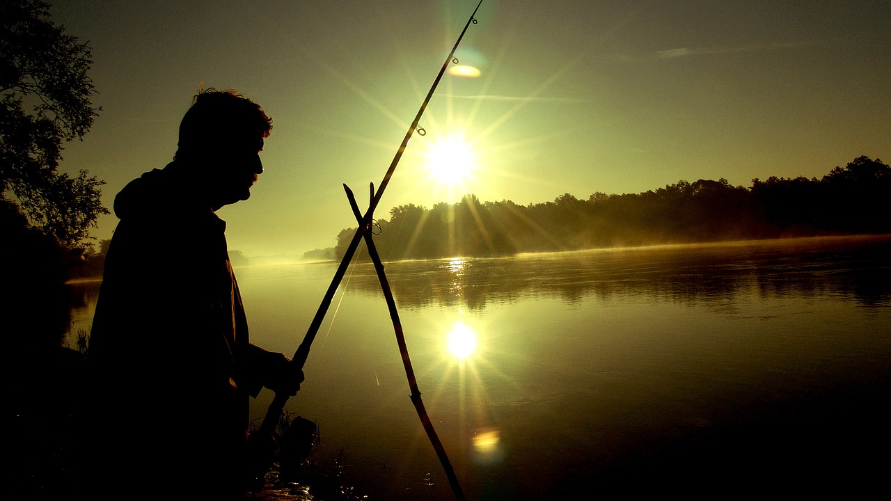 drava dawn fishing free photo