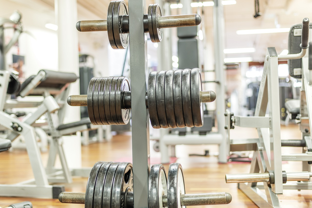 Download free photo of Dumbbells, weight plates, gym, muscle ...