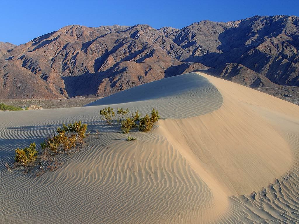 dunes desert death valley free photo