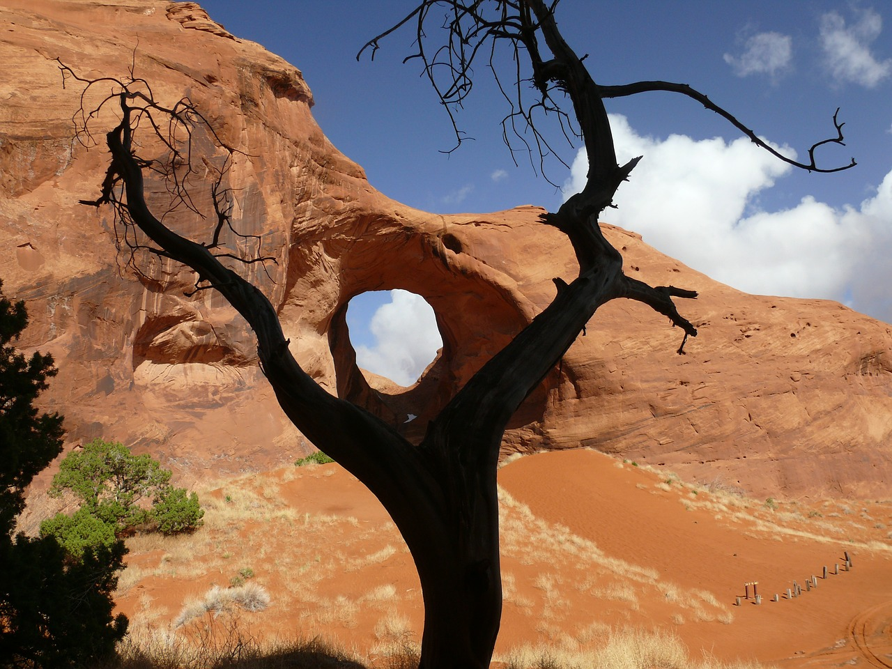 ear of the wind arch sandstone free photo