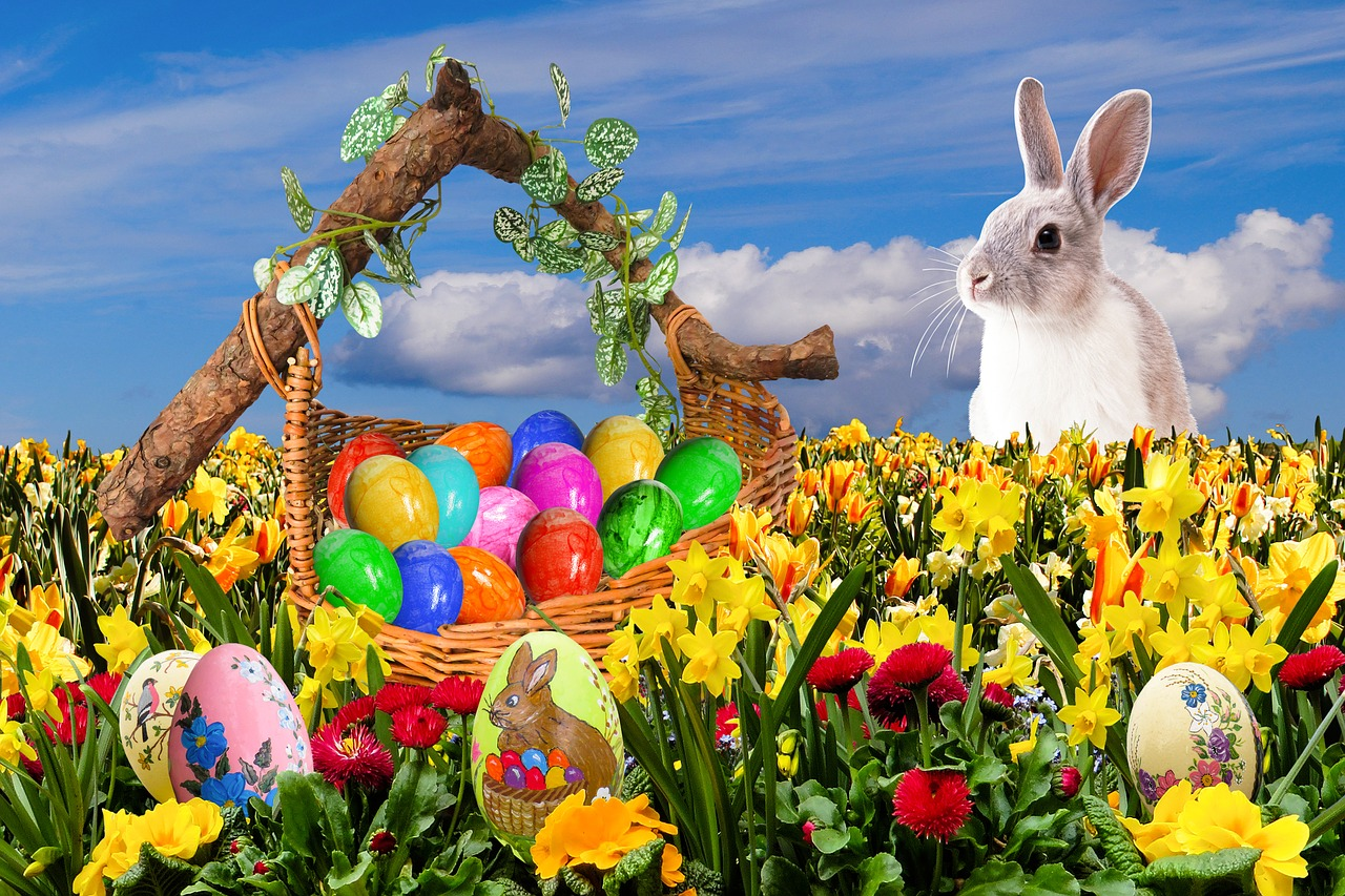 easter happy easter easter nest free photo