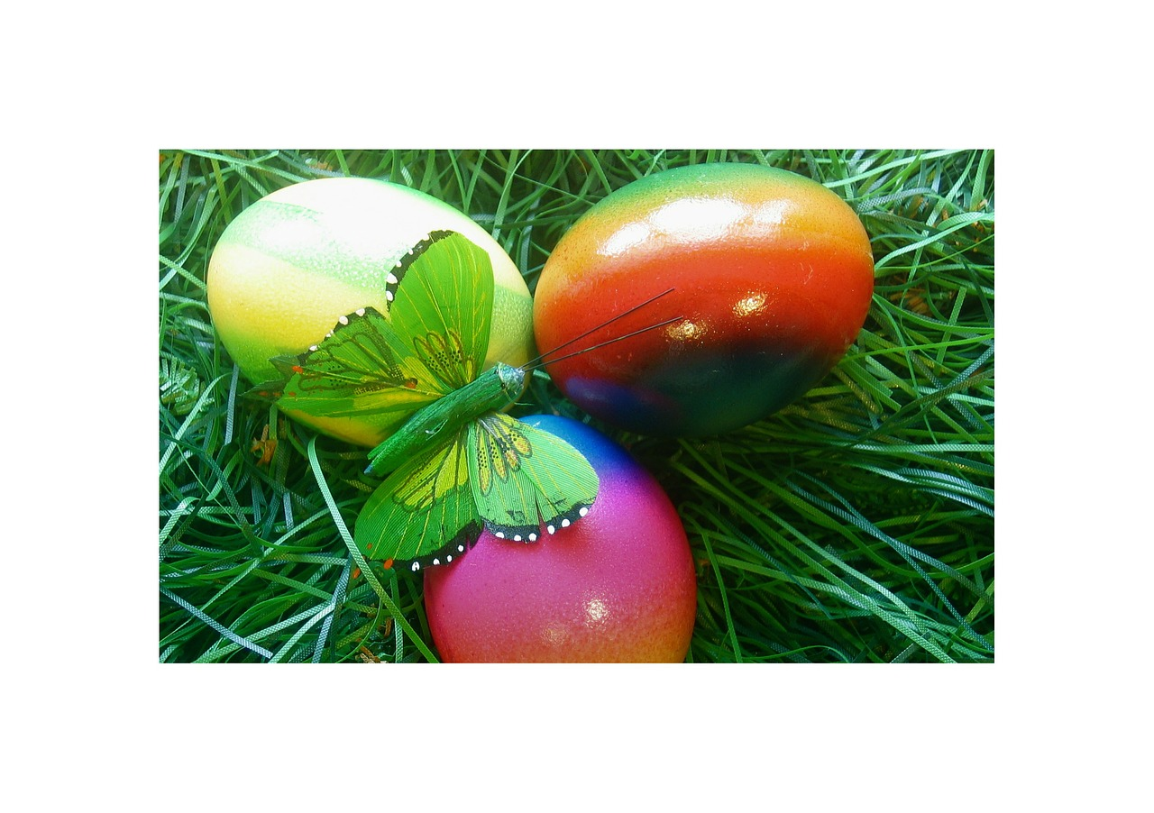 easter egg spring free photo