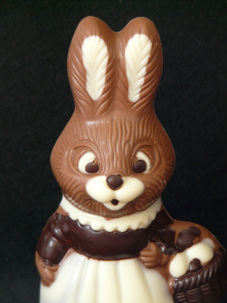 easter bunny easter chocolate free photo