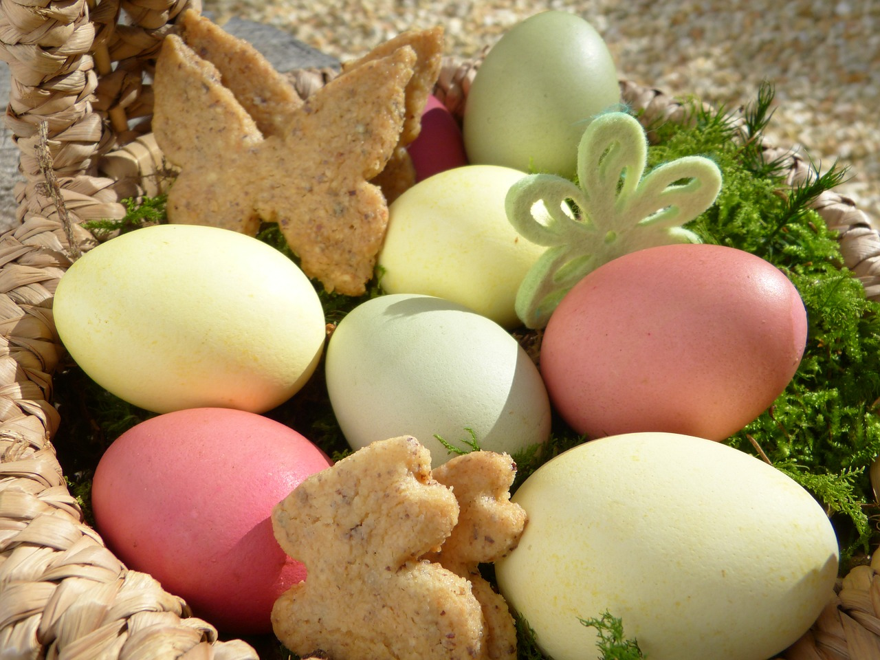 easter nest easter eggs cookies free photo