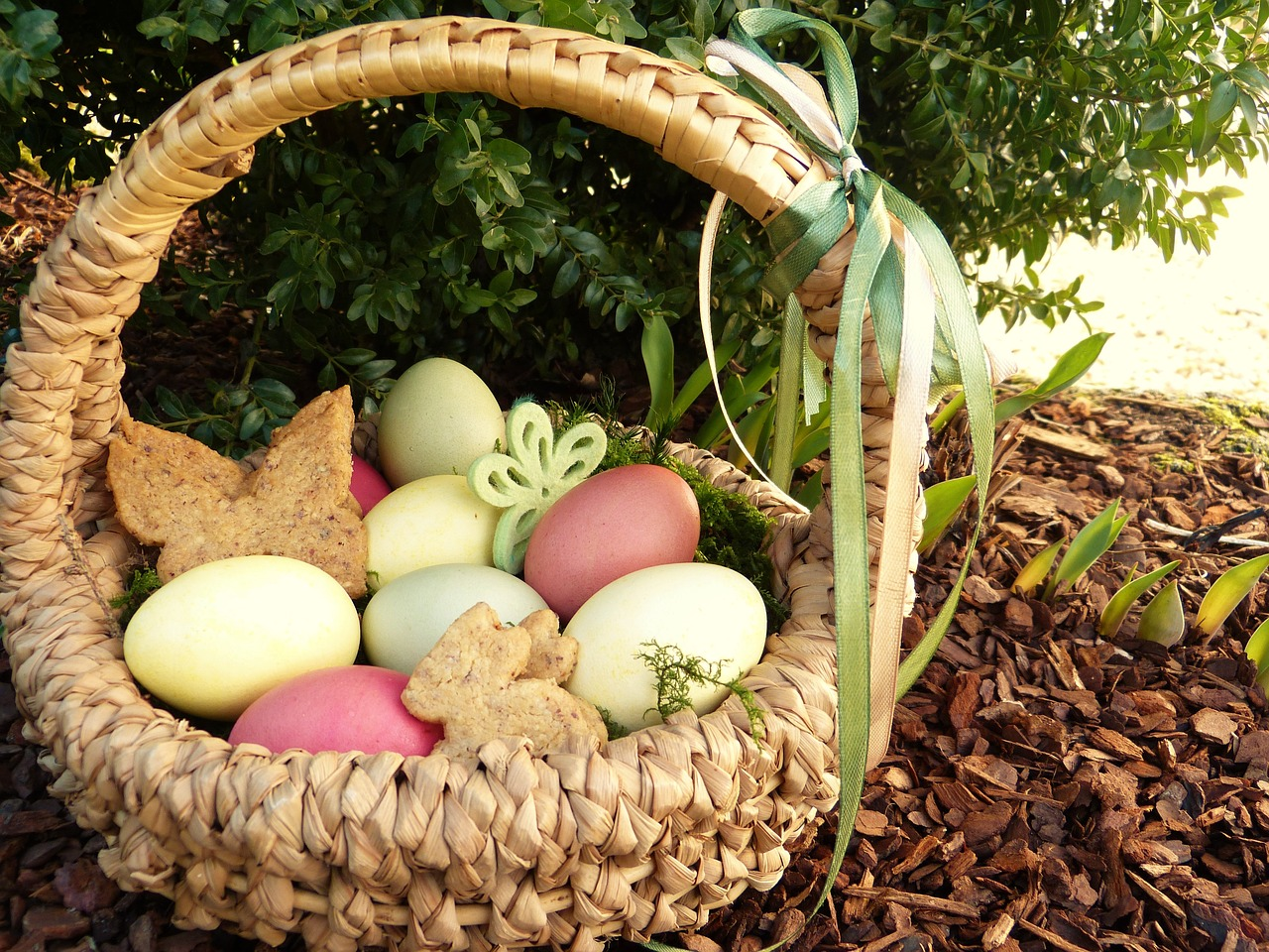 easter nest easter eggs colored free photo