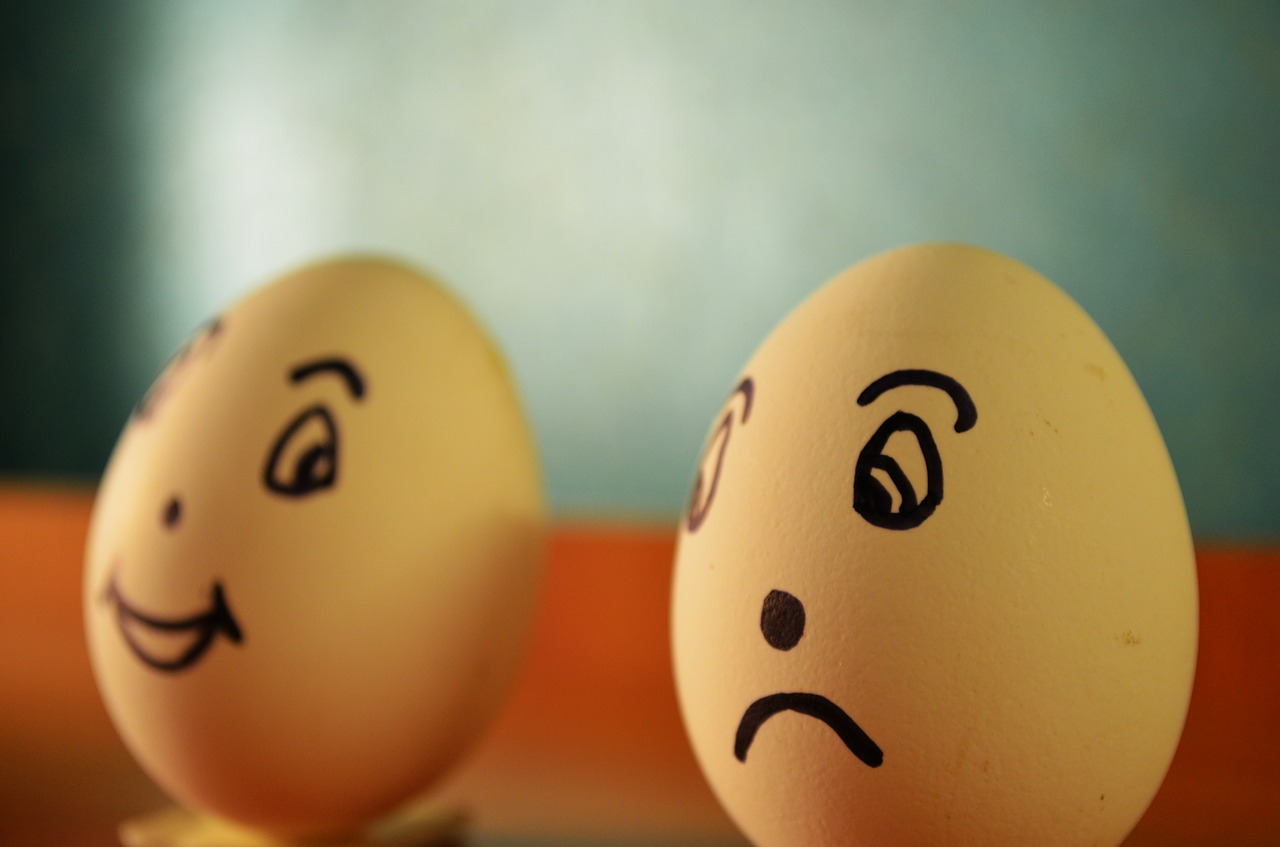 eggs expression happy free picture