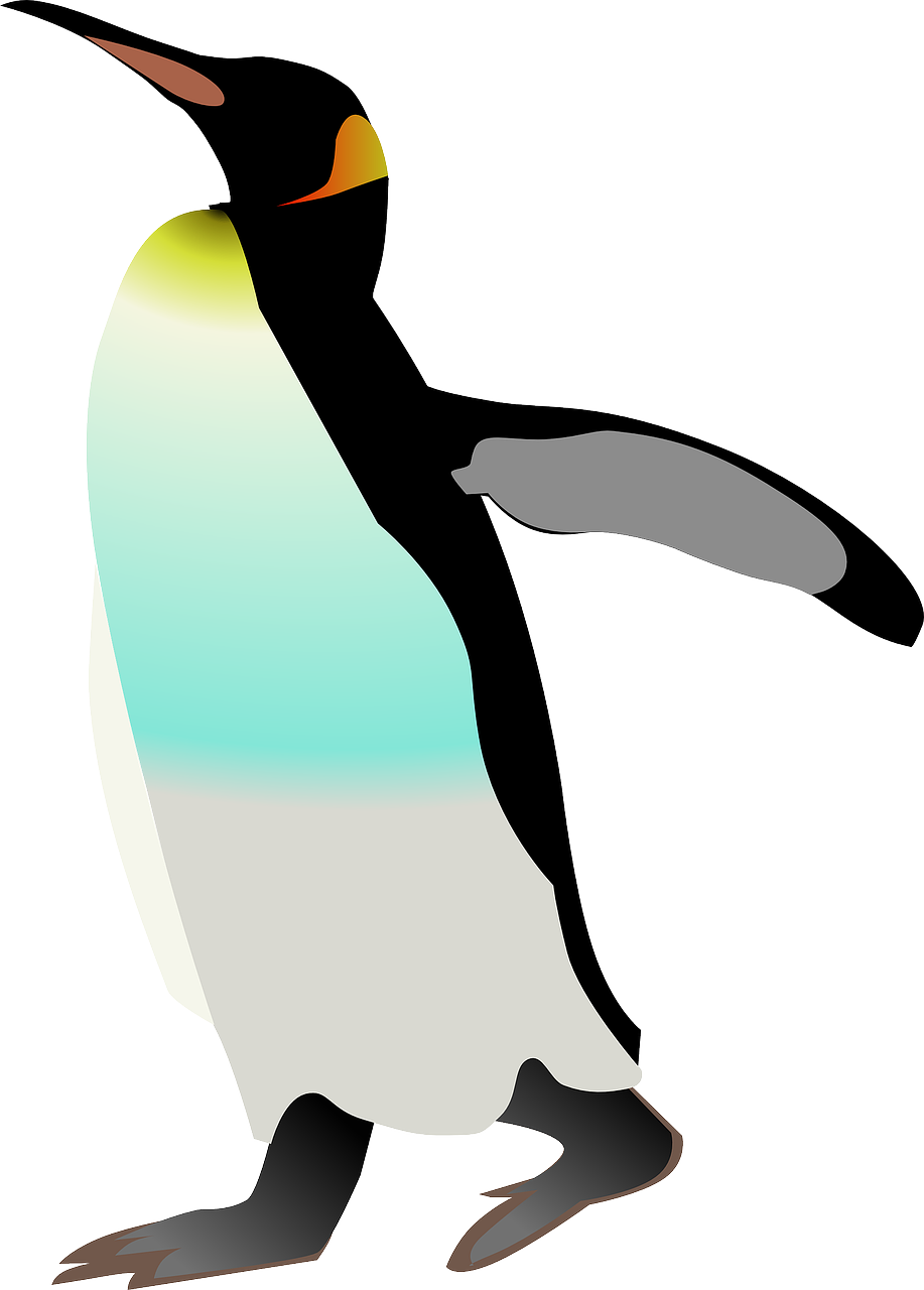 emperor penguin penguin bird free photo