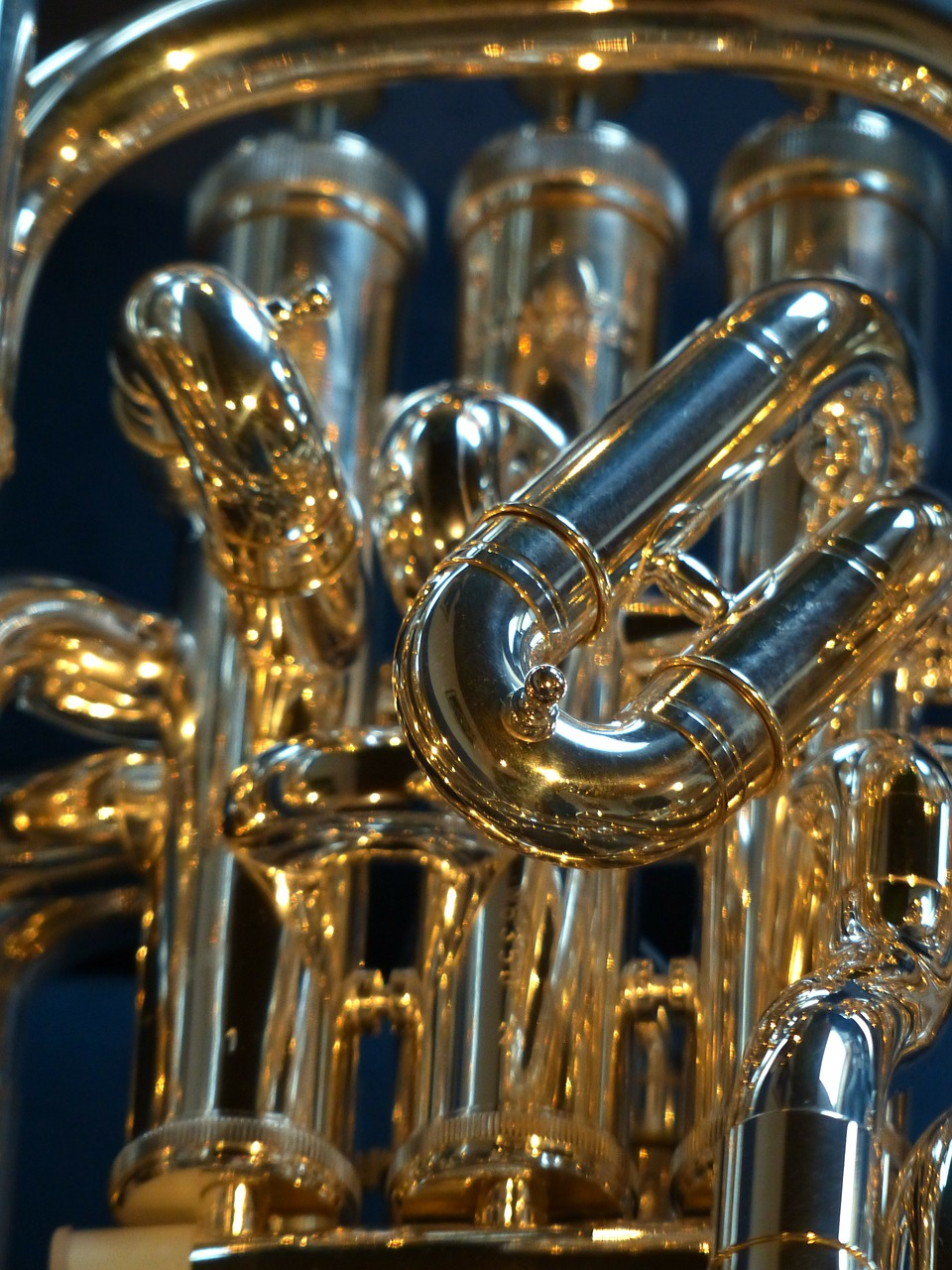 euphonium brass instrument instrument free photo