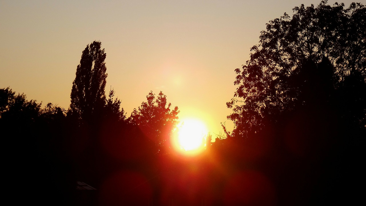 evening sun,sunset,evening,free pictures, free photos, free images, royalty free, free illustrations, public domain
