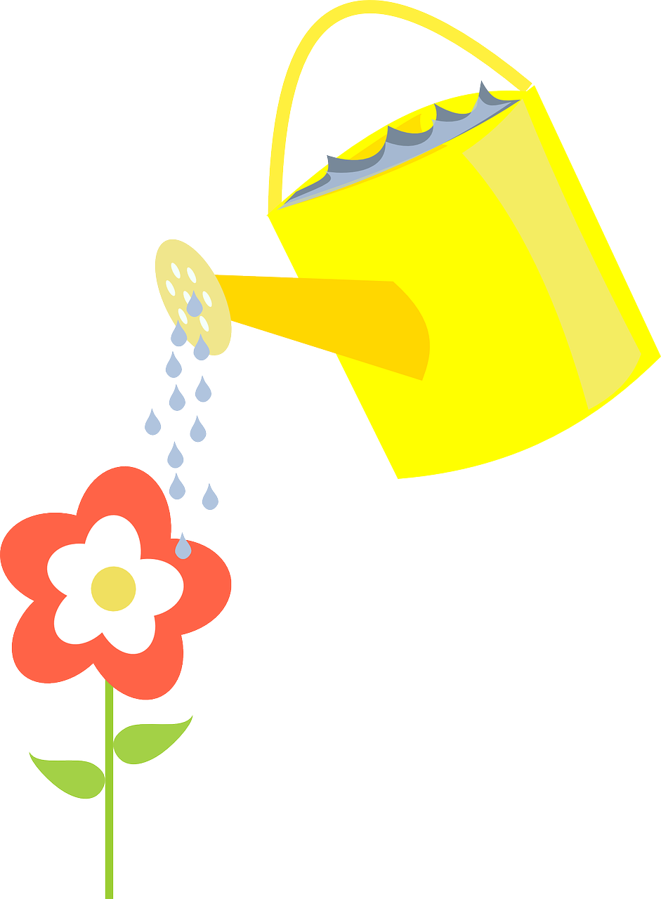 ewer watering flower free photo