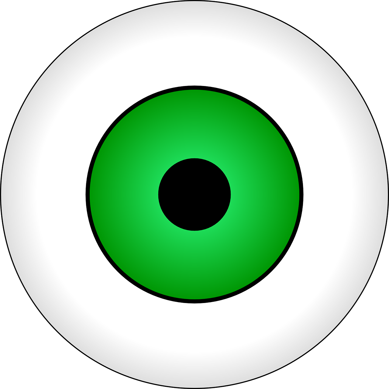 eye eyeball vision free photo