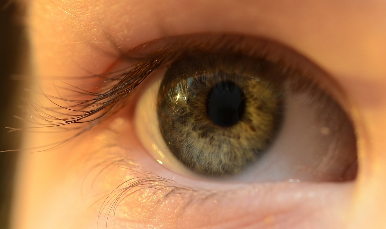 Image result for eye health tips
