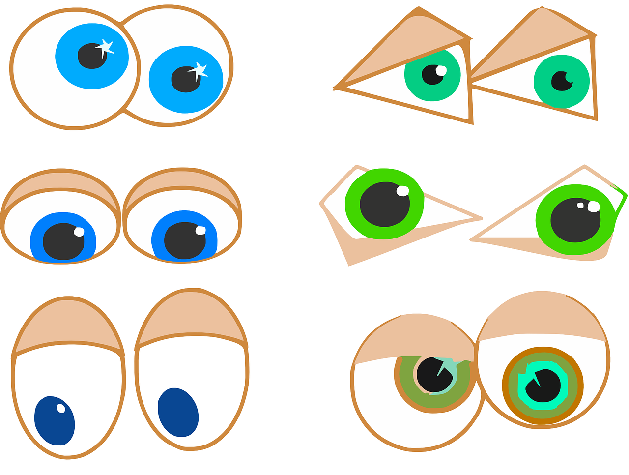 eyes anatomy eyesight free photo