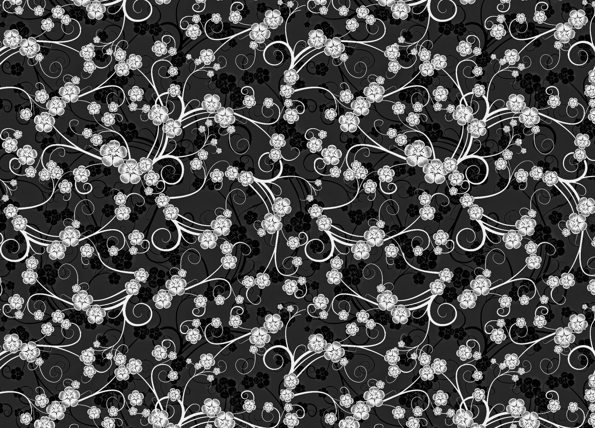 Black White Floral Pattern Background Free Image From Needpix Com