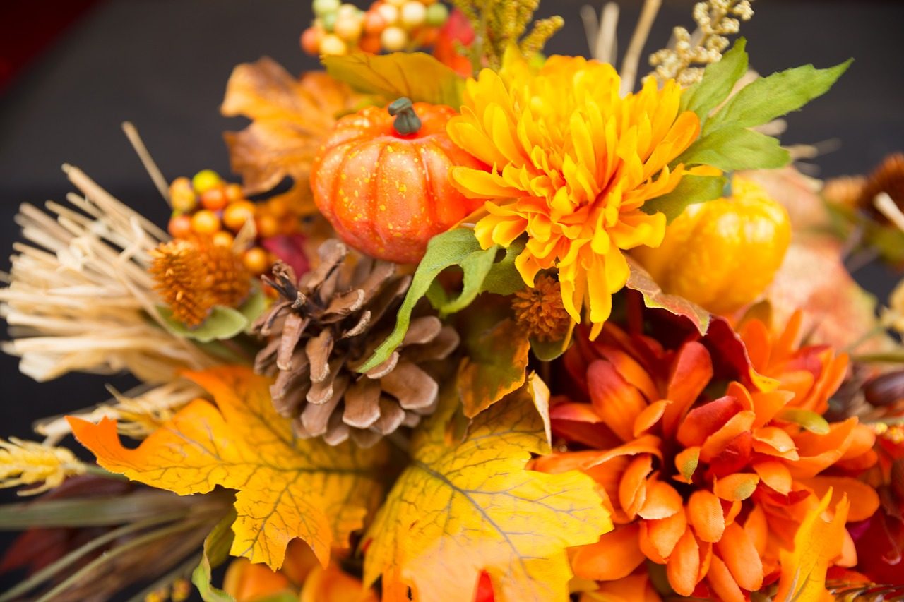 Download Free Photo Of Fall Flowers Thanksgiving Flowers Fall