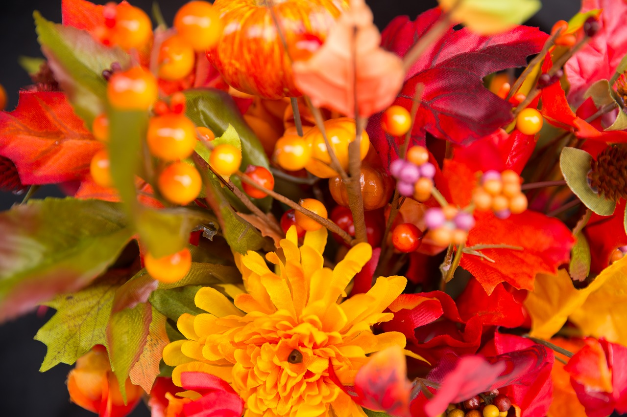 Fall Flowers Thanksgiving Flowers Fall Thanksgiving Season Free