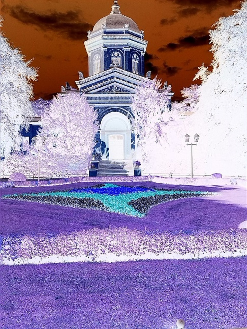 false color inverted infra red free photo