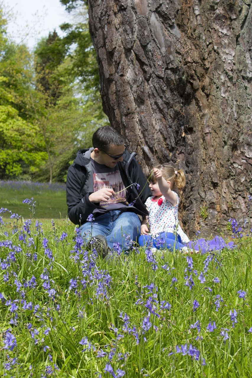 father daughter bluebells free picture