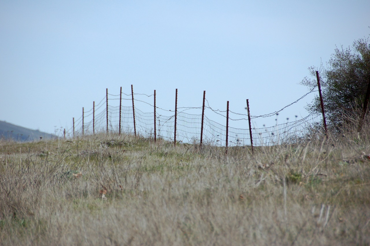 Fence,wire fence,field fence,barbed wire,field - free photo from ...