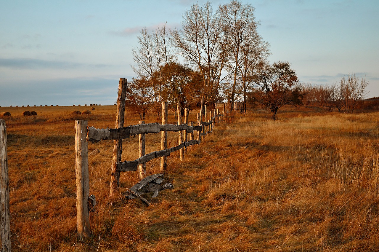 fence wood autumn free photo