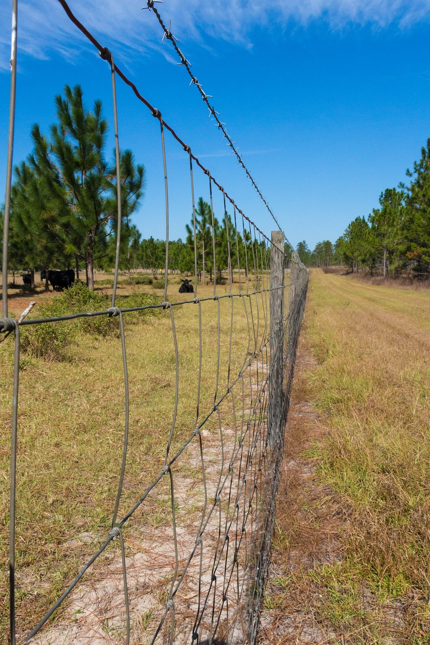 FENCE COUNTRY FARM RURAL GRASS FREE PHOTO FROM