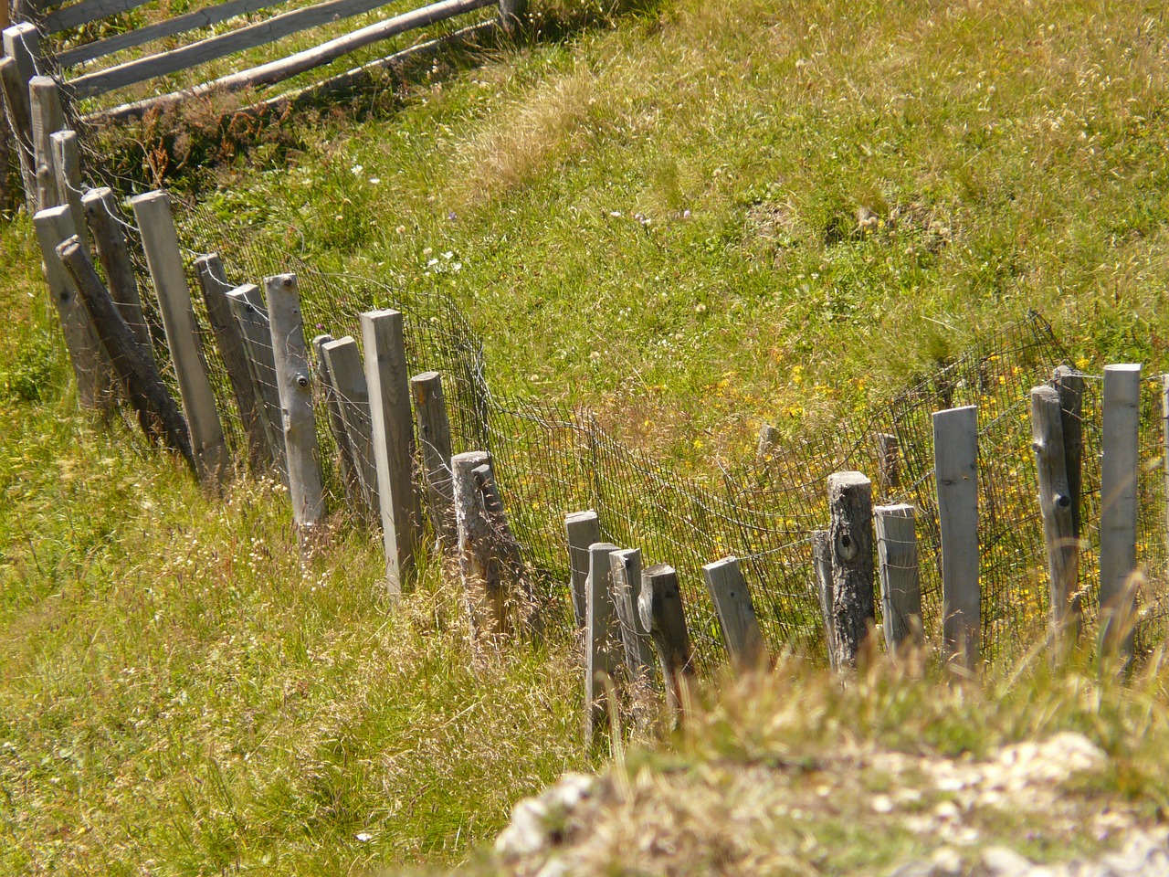fence wood meadow free photo