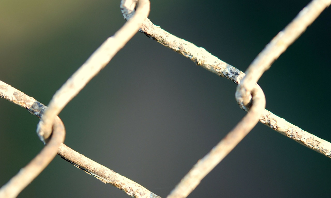 fencing chainlink wire free photo
